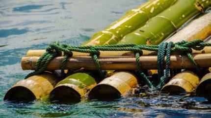 raft-waters-wonkhe