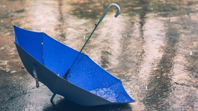 umbrella-rain-wonkhe