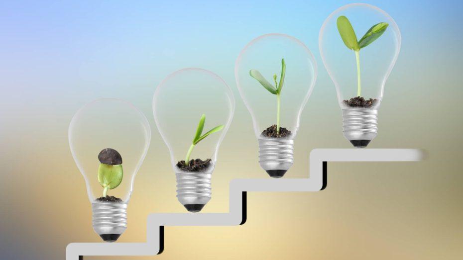 Innovation growth steps