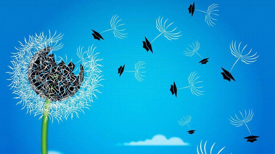 seeds-education-spread-wonkhe