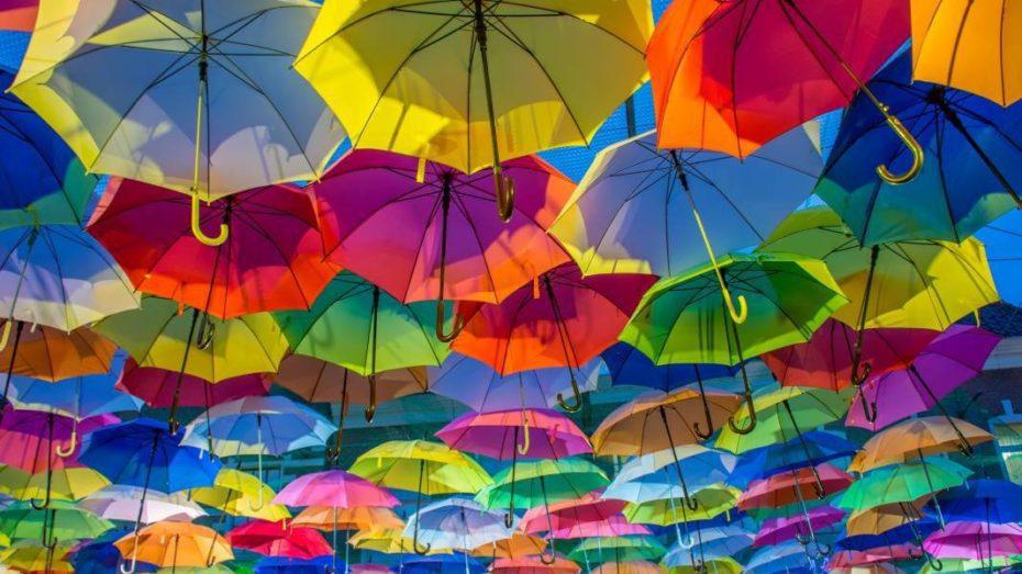wonkhe-umbrella-protect