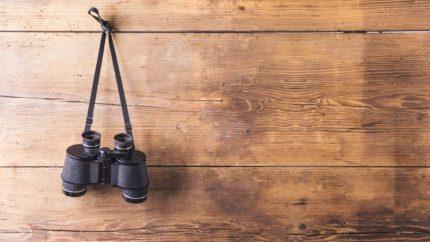 wonkhe-binoculars-history