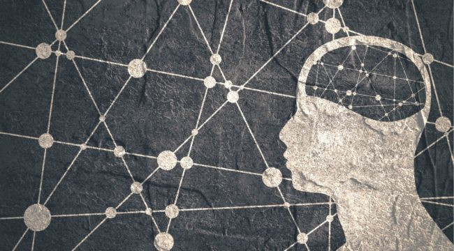 wonkhe-research-science-brain