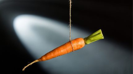 wonkhe-incentive-carrots