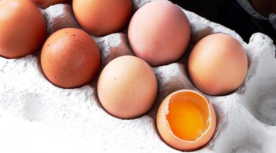 wonkhe-bad-egg