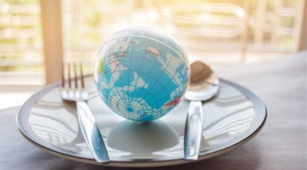 Wonkhe globe plate world