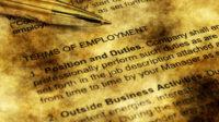 wonkhe-employment-gold